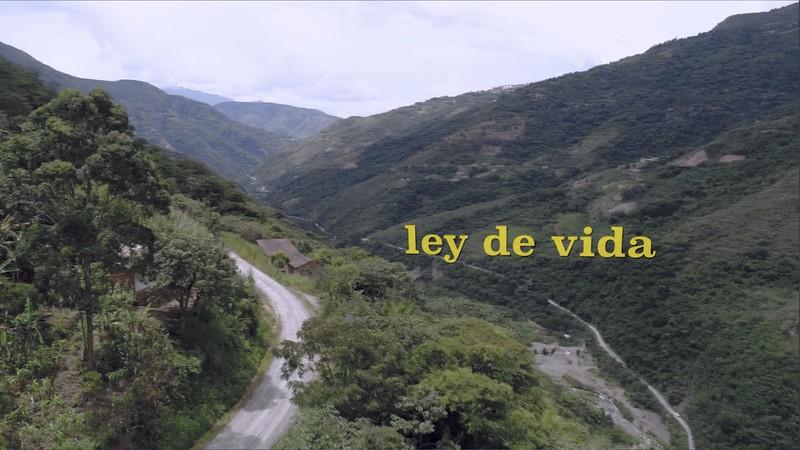 Ley de vida film MOc Gór festiwal 2020